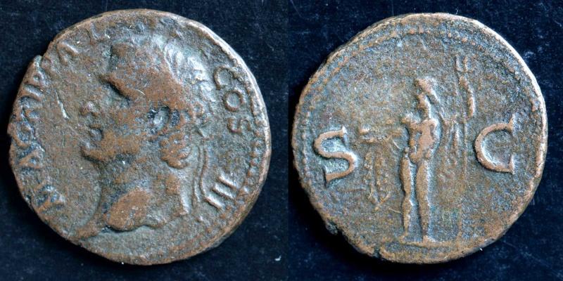 Mes petites dernières - Page 2 Agripp10