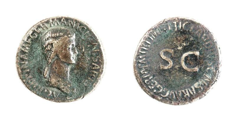 Mes petites dernières - Page 2 Agripp11
