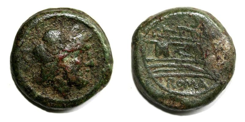 Bronze de la republque CAECILIA ? Bronze10