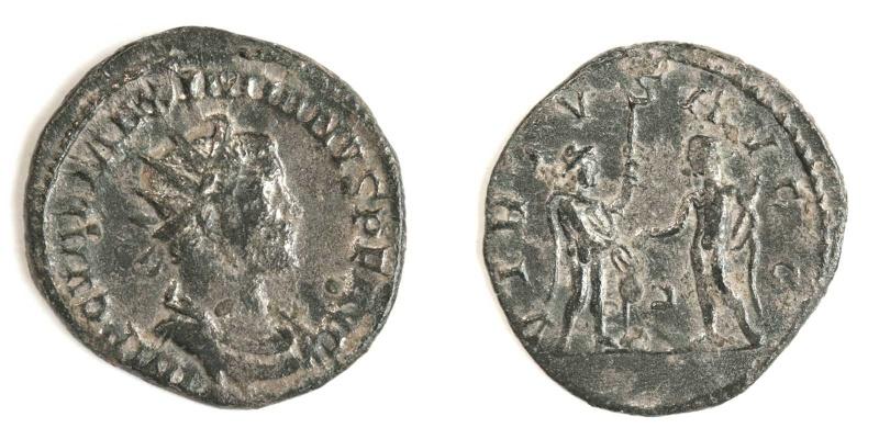 Aureliani de Lyon de Dioclétien et de ses corégents - Page 2 Maximi13