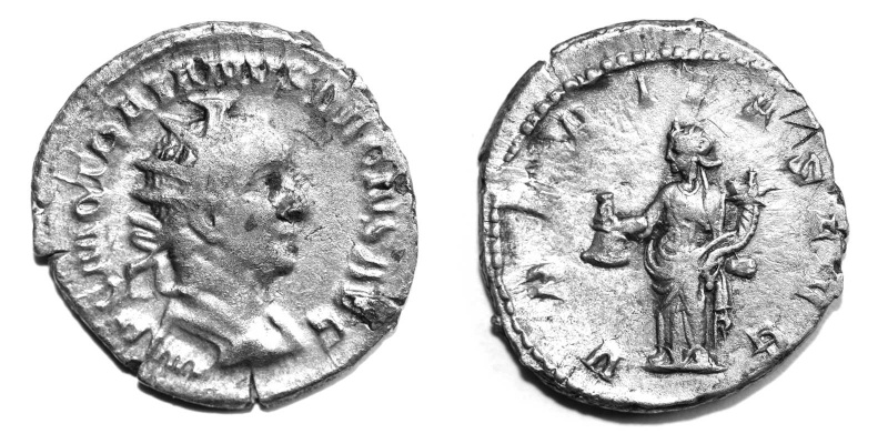 Mes petites dernières - Page 5 Trajan17