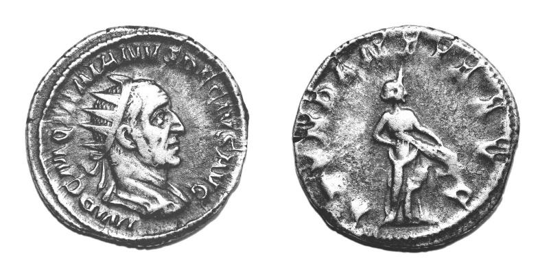 Mes petites dernières - Page 5 Trajan18