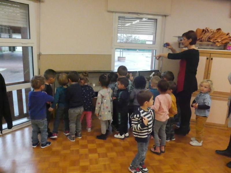 Ecoles de Muret P1010011