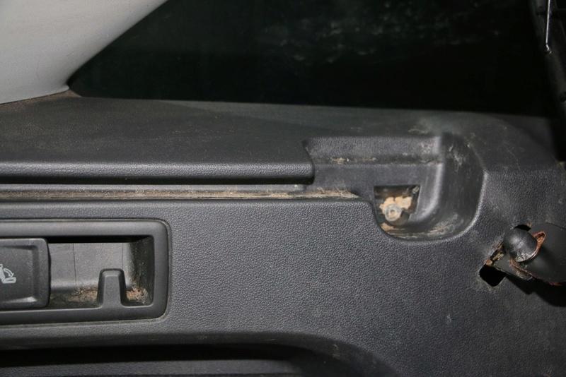 cagnone nel bagagliaio e i suoi peli Img_2922
