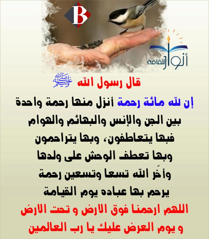 Marque ton passage au forum par une aya ou un hadith - Page 4 085_n10