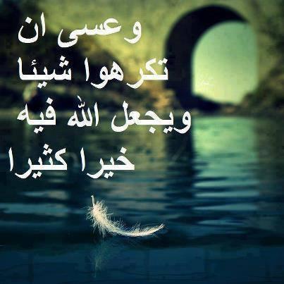 Marque ton passage au forum par une aya ou un hadith - Page 3 S10