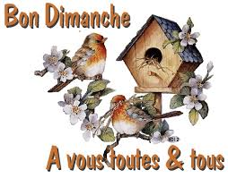 dimanche 2 avril 2017. Images18