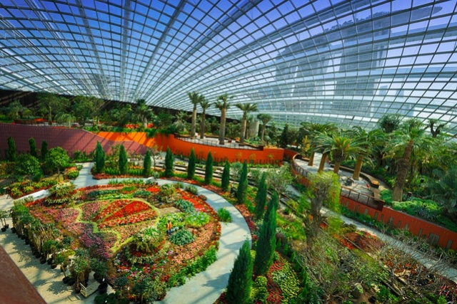 GARDEN BY THE BAY (Singapour) Flower12