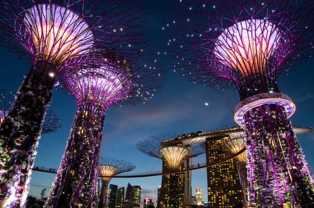 GARDEN BY THE BAY (Singapour) Garden16