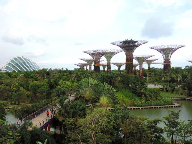 GARDEN BY THE BAY (Singapour) Garden17