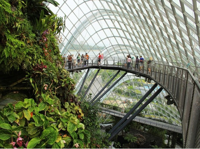 GARDEN BY THE BAY (Singapour) Gbtb_c10