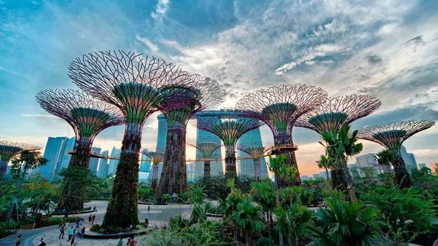 GARDEN BY THE BAY (Singapour) Img-6110