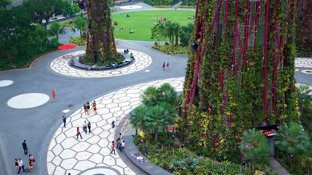 GARDEN BY THE BAY (Singapour) Singap12