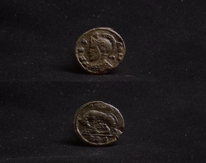 Les petits bronzes Imgp9612