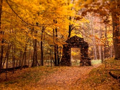 Le brave, brave automne - Jules Laforgue Le_bra10
