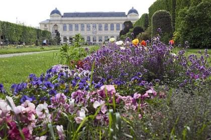 Une promenade au Jardin des Plantes - Alfred de Musset Une_pr10