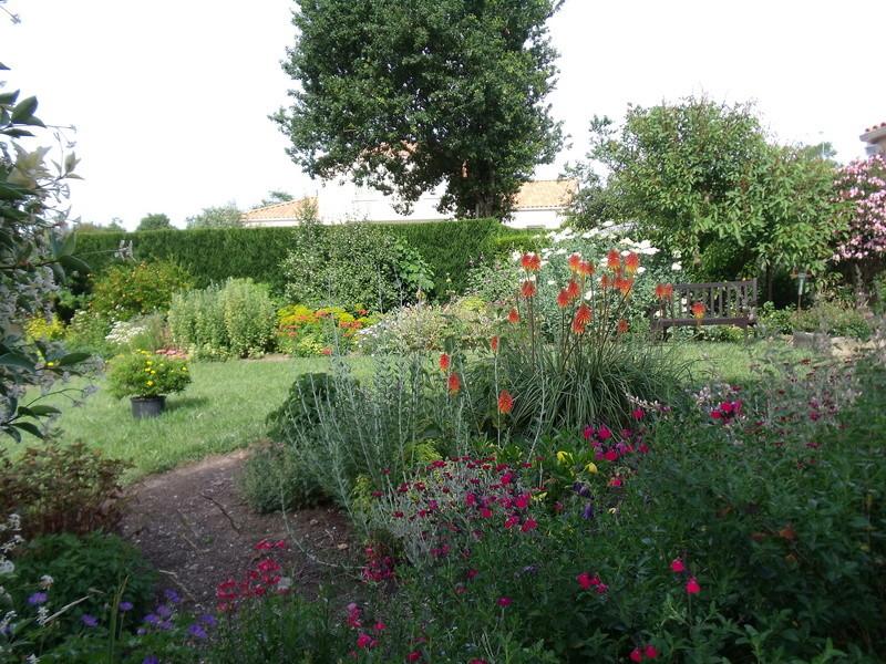 ces quelques fleurs de nos jardins - Page 4 Jardin10