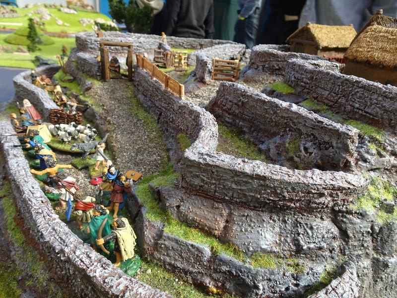 La construction du fort Picte  Dsc03455