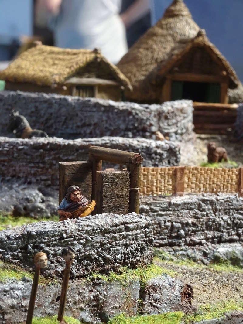 La construction du fort Picte  Dsc03456