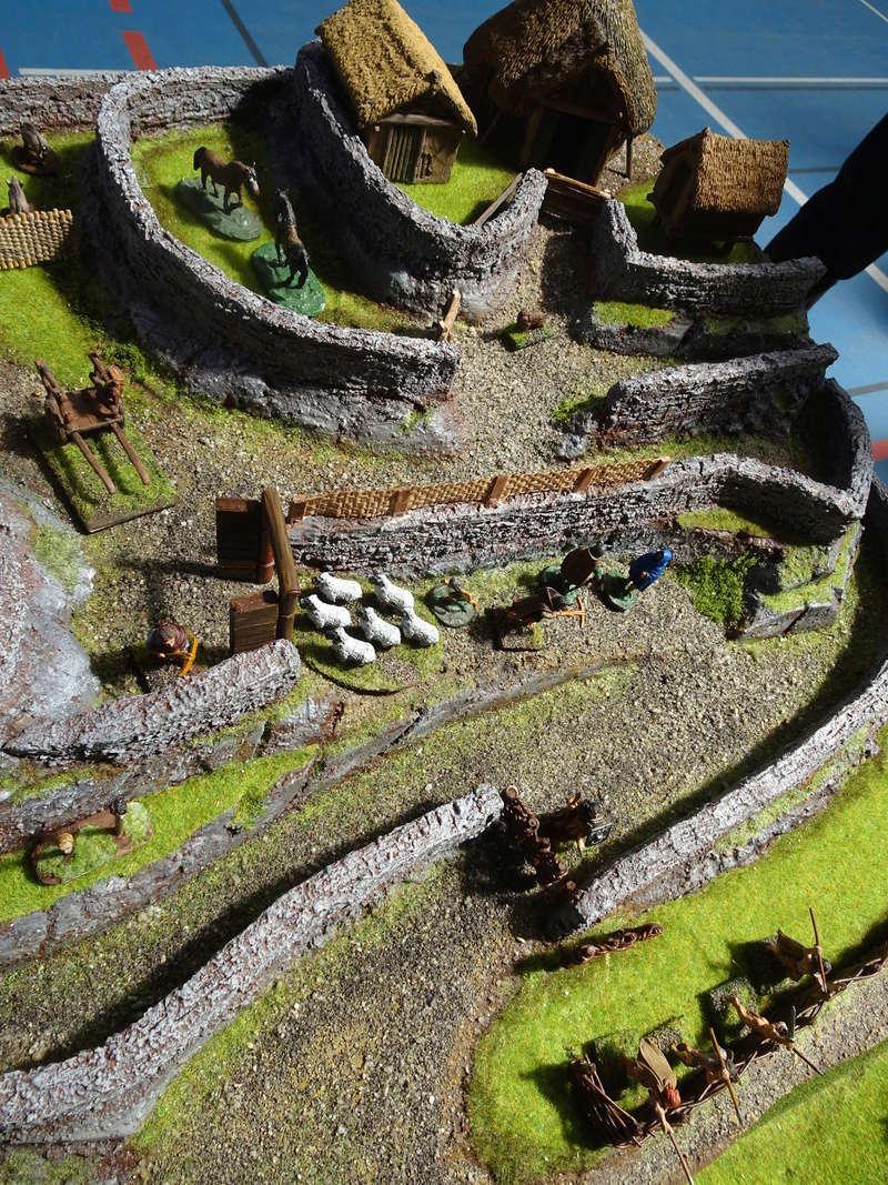 La construction du fort Picte  Dsc03457