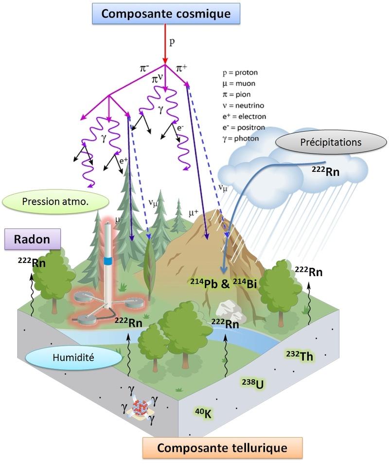 Réseau de surveillance radiologique : Teleray Schema10