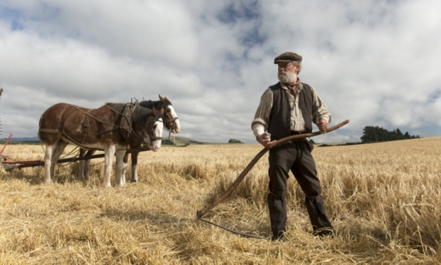 Sunset Song - adaptation ciné d'un roman écossais de Lewis Grassic Gibbon Image12