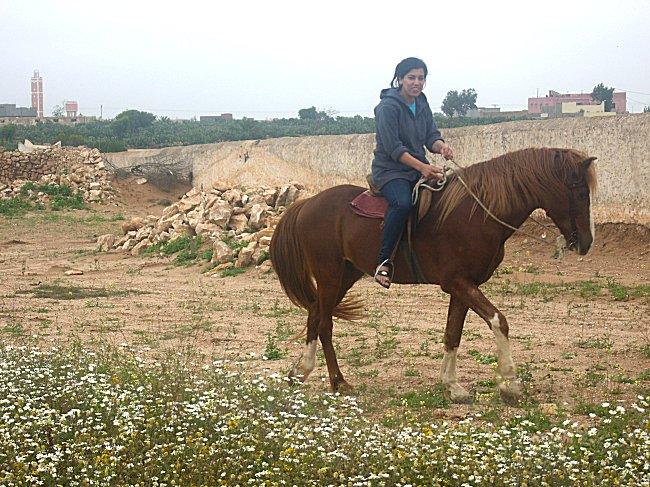 Mes photos de vacances : landing succes in Ouled mimoune 1_1_1010