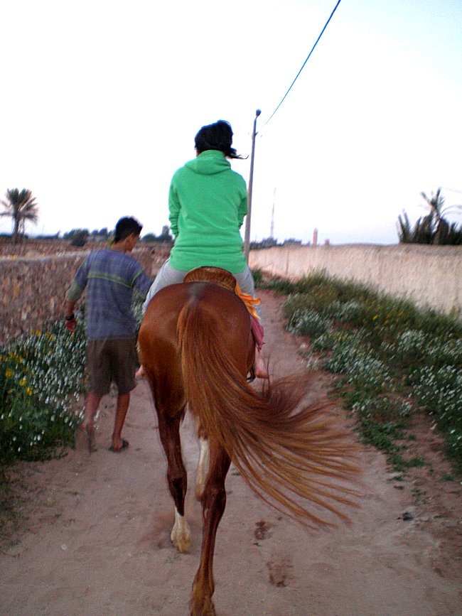 Mes photos de vacances : landing succes in Ouled mimoune 1_1_610