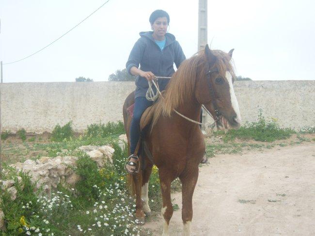 Mes photos de vacances : landing succes in Ouled mimoune 1_1_810