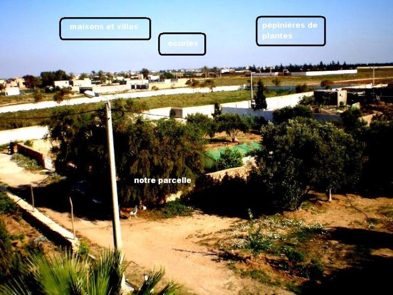 Mes photos de vacances : landing succes in Ouled mimoune 1a610