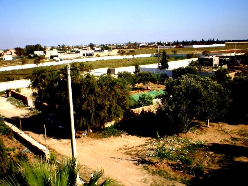 Mes photos de vacances : landing succes in Ouled mimoune 1a611