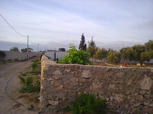 Mes photos de vacances : landing succes in Ouled mimoune Mimoun38