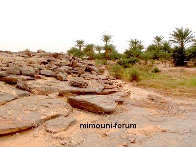 Amazigh - L'Amazigh  le peuple batisseur  et inventeur , guerrier et fier Mimoun56
