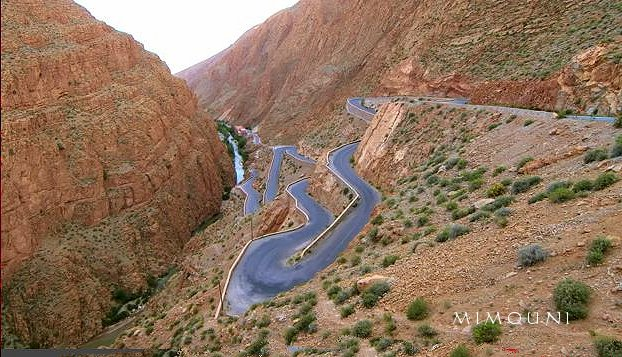 Amazigh - L'Amazigh  le peuple batisseur  et inventeur , guerrier et fier Mimoun69