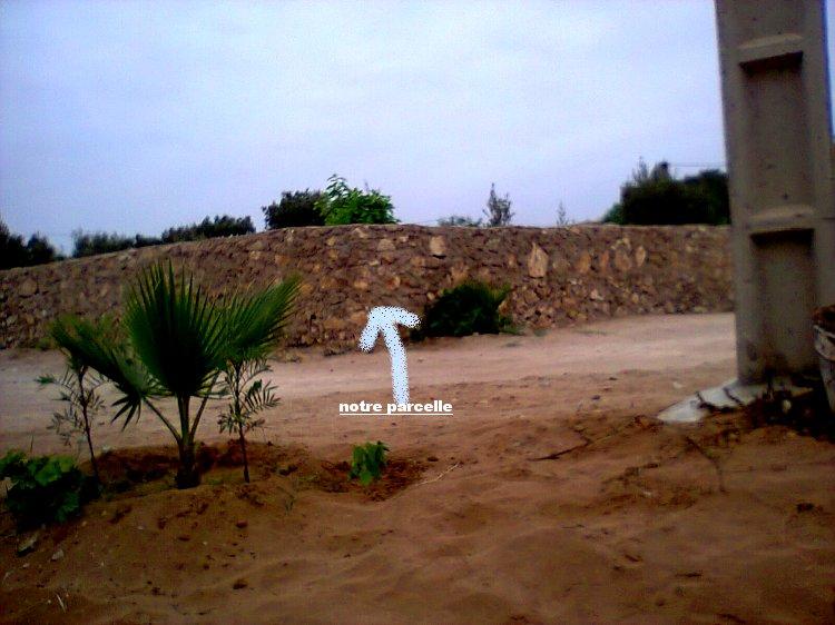 Mes photos de vacances : landing succes in Ouled mimoune Vac_a_10