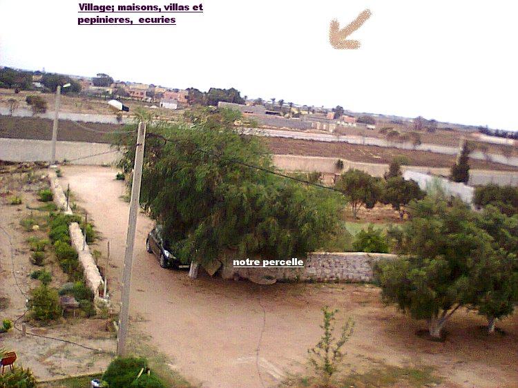 Mes photos de vacances : landing succes in Ouled mimoune Vac_b_11