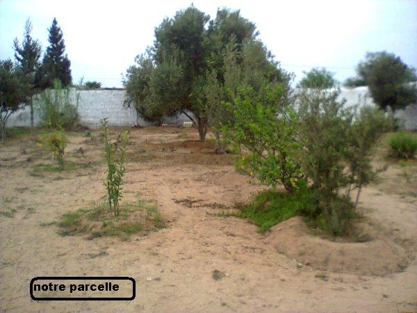 Mes photos de vacances : landing succes in Ouled mimoune Vacanc18
