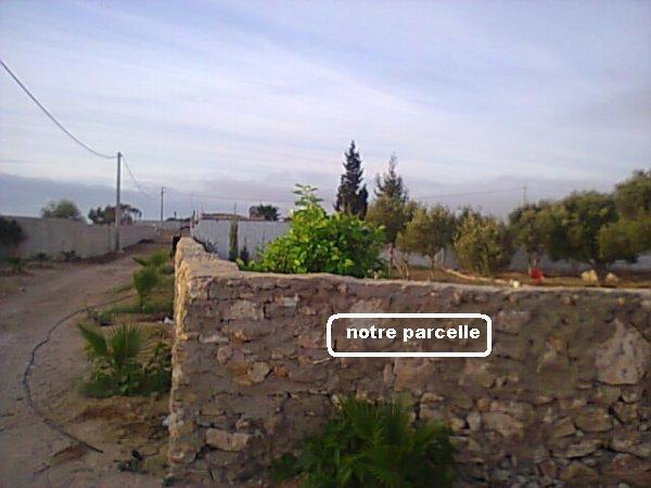 Mes photos de vacances : landing succes in Ouled mimoune Vacanc19