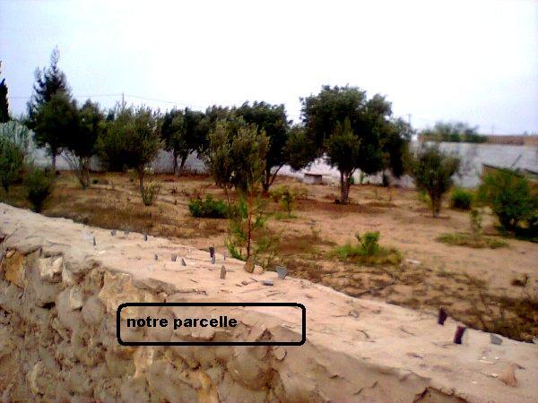 Mes photos de vacances : landing succes in Ouled mimoune Vacavc10
