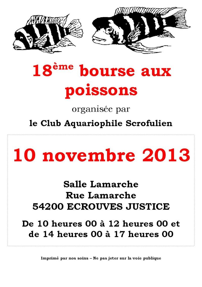 Bourse à Ecrouves - 10 novembre 2013 Affich10