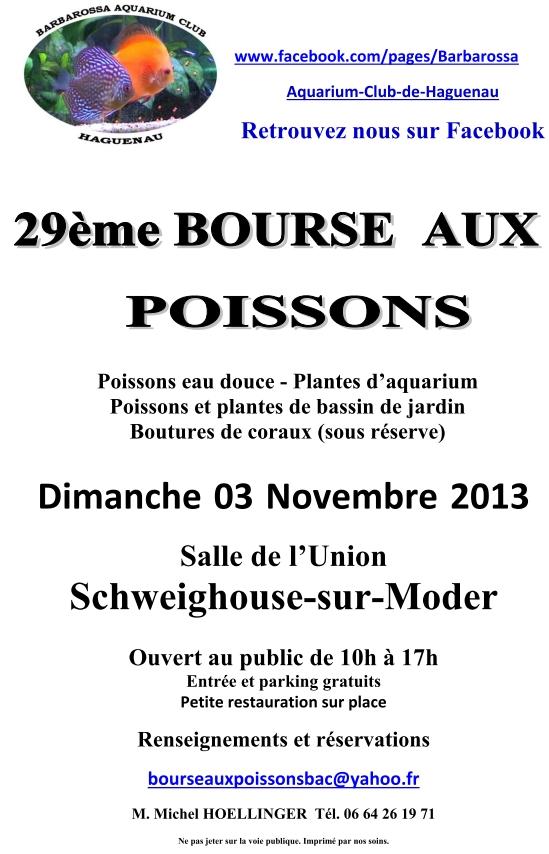 Bourse Schweighouse-sur-Moder - 3 novembre 2013 Bourse10