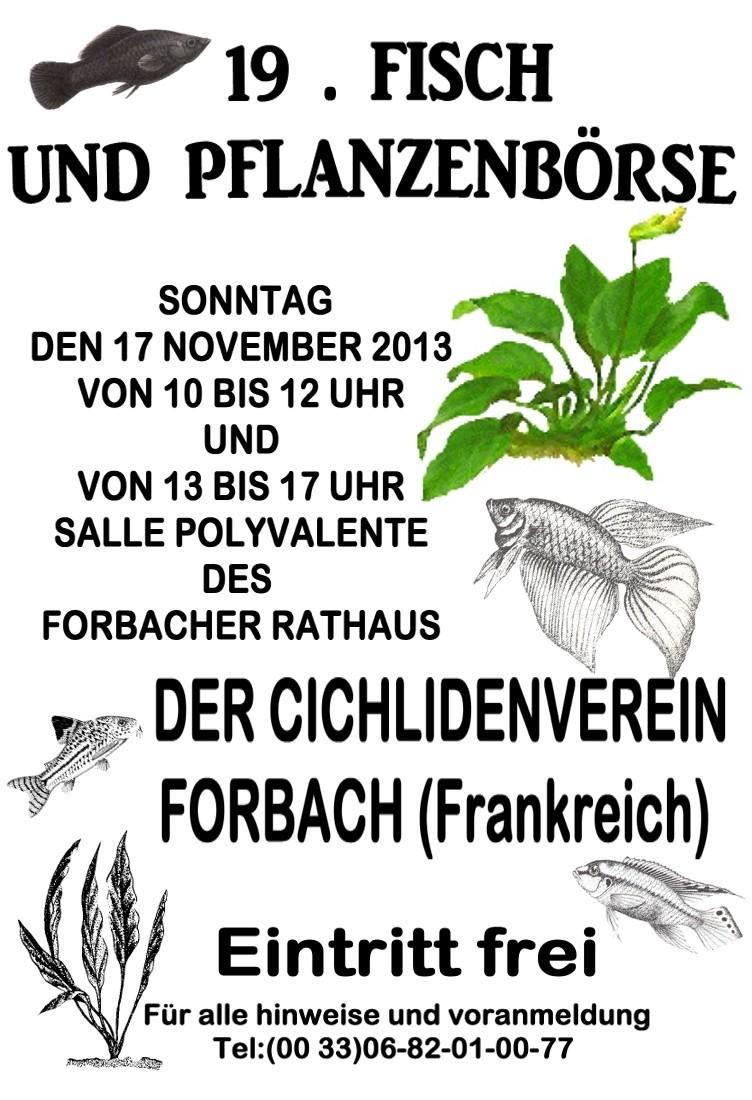 Bourse de Forbach le 17 novembre 2013 Plakat10