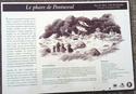 Pontusval - Brignogan Plage Pontus14
