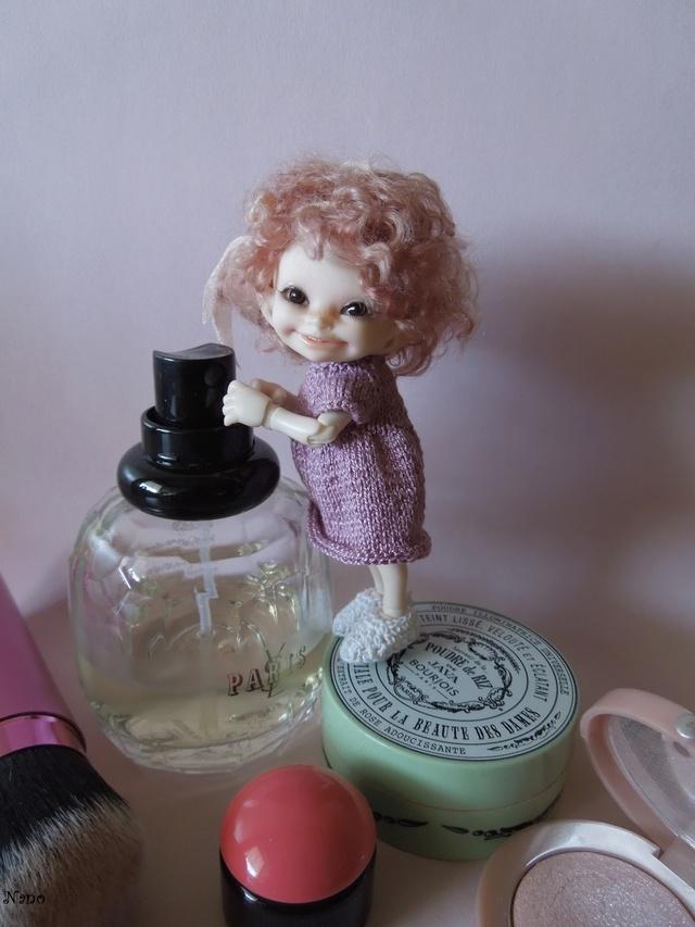 Ma petite famille de BJD (Souldoll, Fairyland, Raccoon doll) Dscn5910