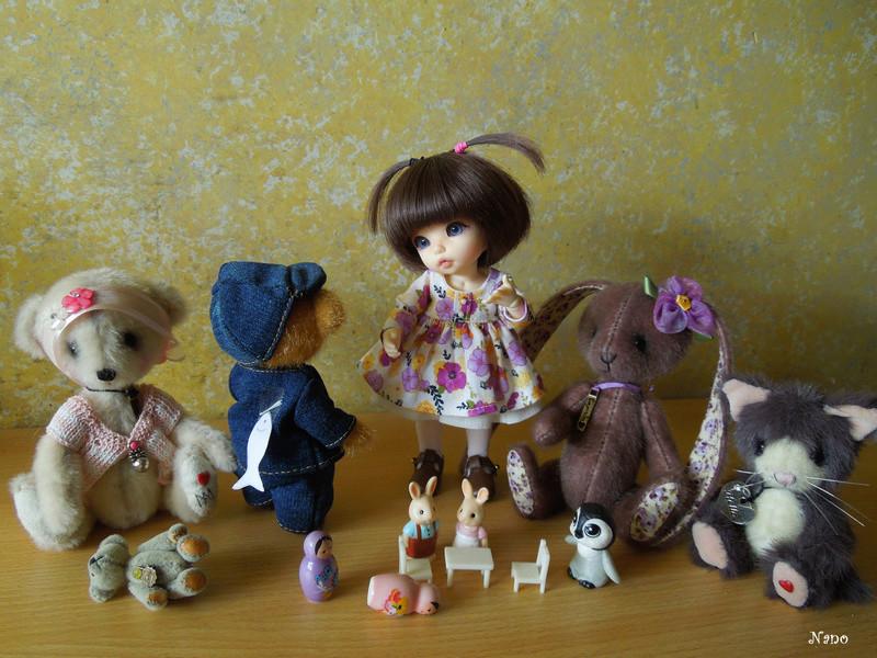 Ma petite famille de BJD (Souldoll, Fairyland, Raccoon doll) - Page 2 Dscn6511