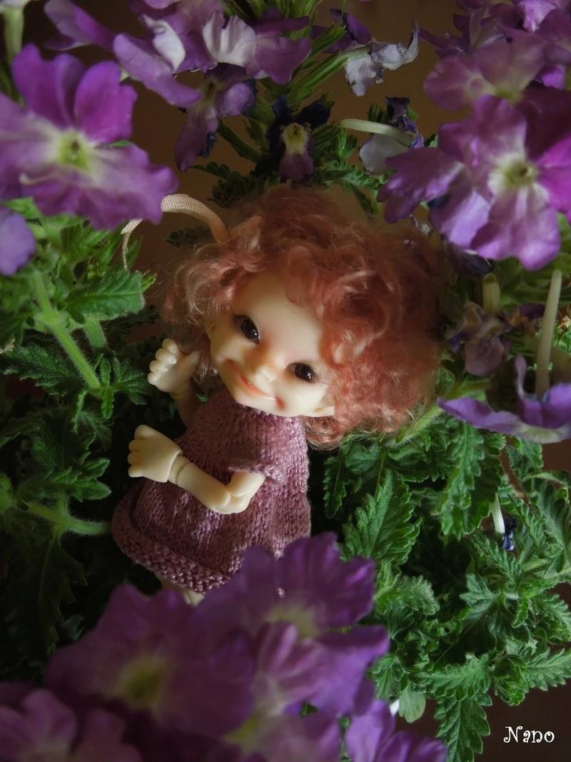Ma petite famille de BJD (Souldoll, Fairyland, Raccoon doll) - Page 6 Dscn6630
