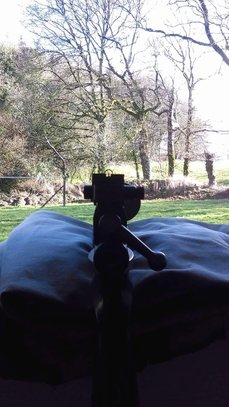 Marauder pistol préparé silhouette métallique  Imag0810