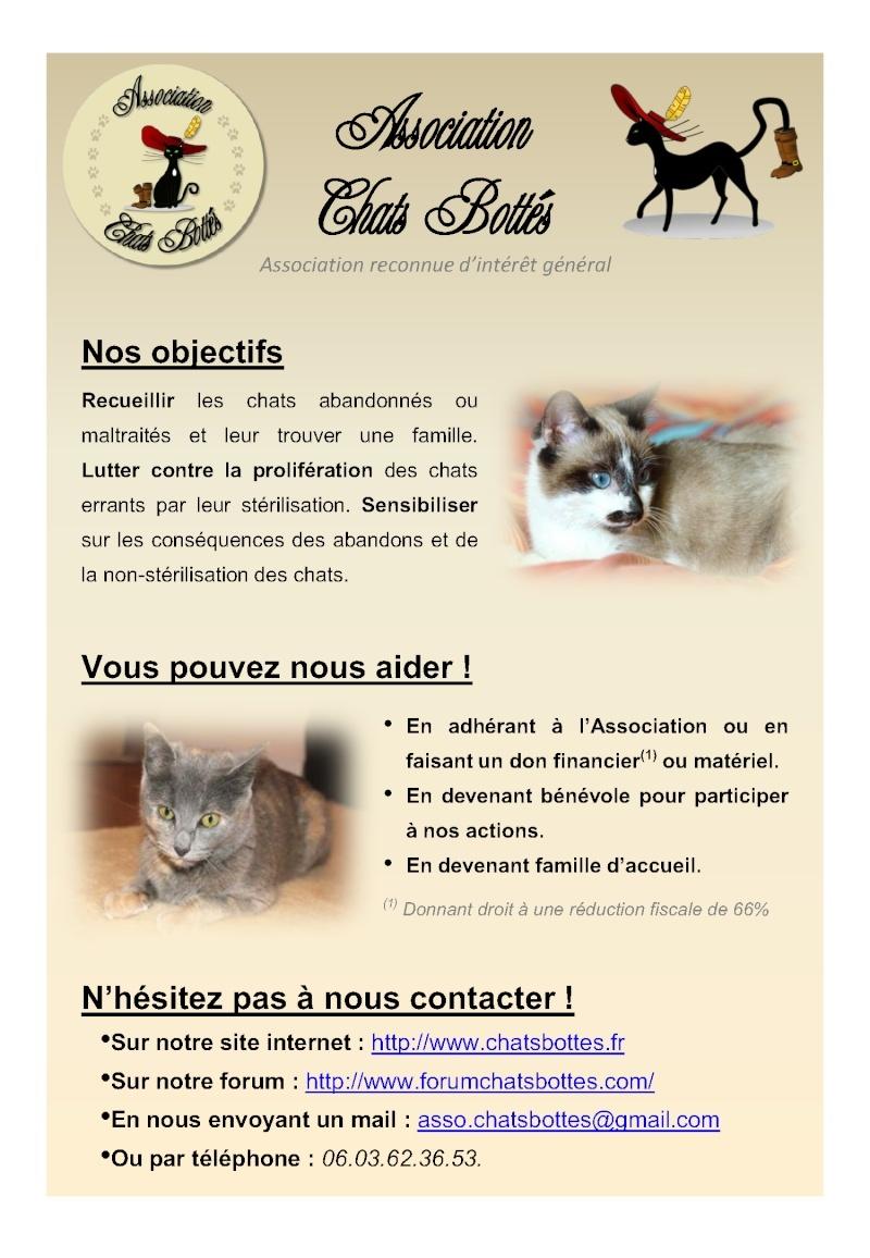 Affiche présentation Chats Bottés Affich11