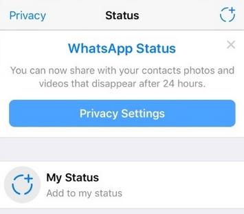 WhatsApp annuncia la funzione Stato: la novità in stile Stories Scherm25