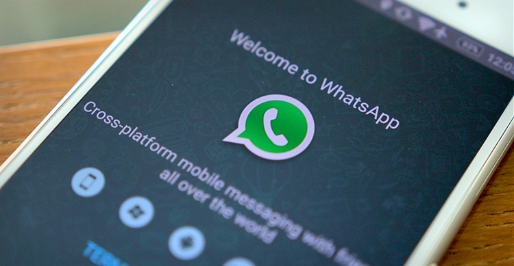 Whatsapp vuole guadagnare soldi con aziende e bot Whatsa10